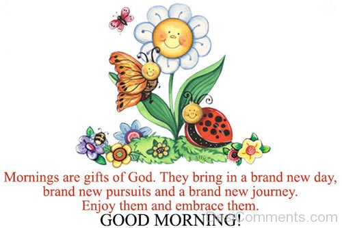 Morning Are Gift Of God