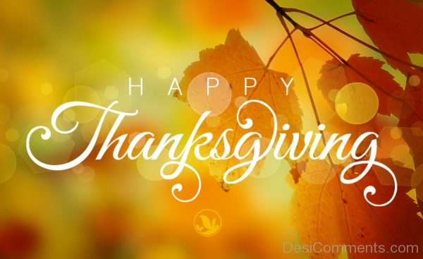 Picture: Nice Happy Thanksgiving Pic