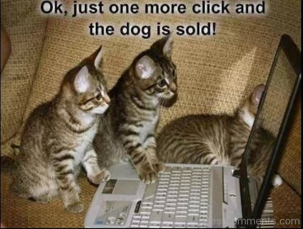 Ok Just One More Click And The Dog Is Sold