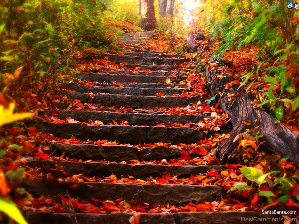 Autumn Pictures Images Graphics For Facebook Whatsapp