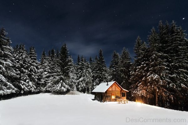 Picture Of Winter