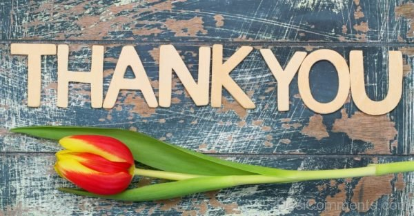 Picture: Thank You With Flower