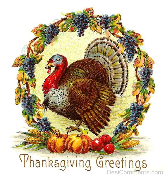 Thanksgiving pictures images graphics download m4hsunfo