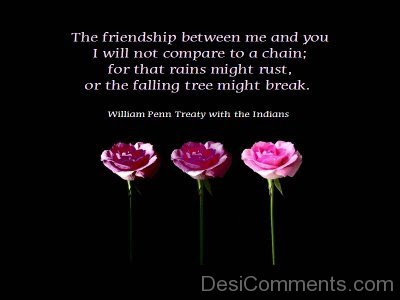 The Friendship Between Me And You