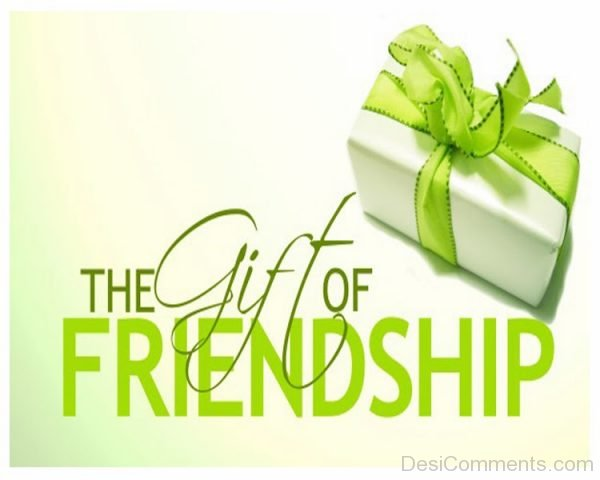 Picture: The Gift Of Friendship