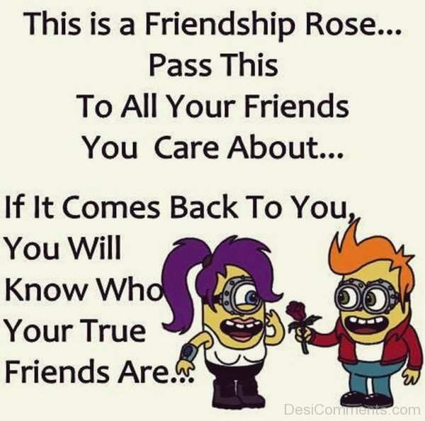 This Is A Friendship Rose Pass This To All Your Friends You Care About