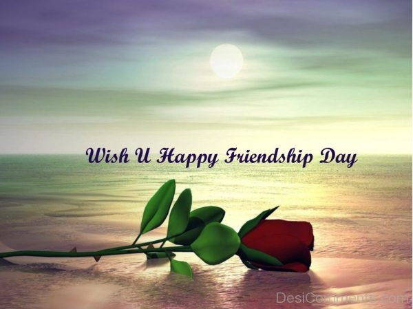 Picture: Wish You Happy Friendship Day