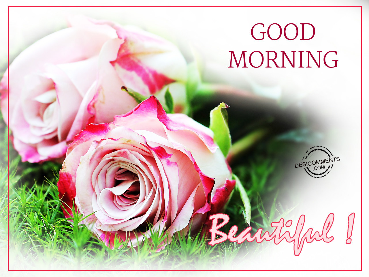 Good Morning Pictures Images Graphics Page 88