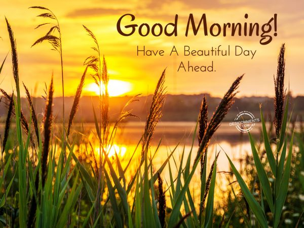 Good Morning Beautiful Have A Good Day : Good morning have a beautiful day ahead desicomments