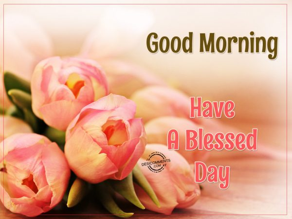 Good Morning Have A Blessed Day Picture