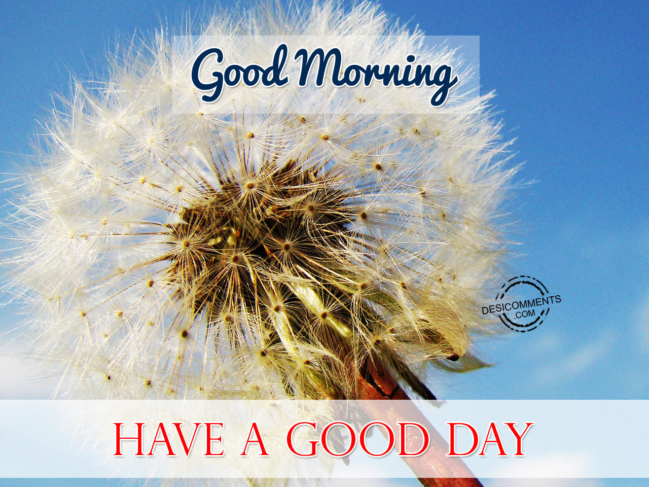 Good Morning Have A Good Day - DesiComments.com Have A Good Day