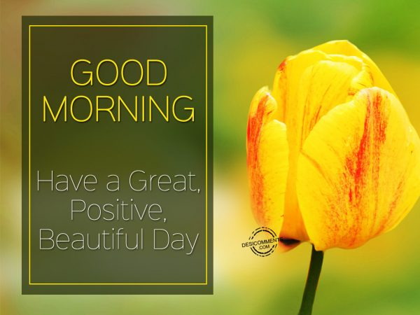 Good Morning Have A Great Positive Beautiful Day
