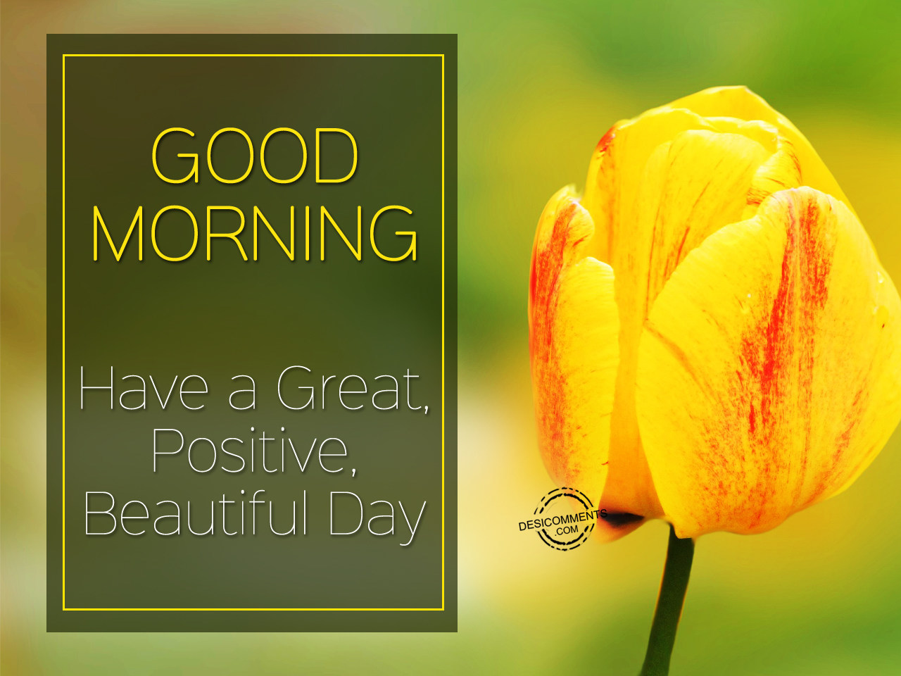 Good Morning Beautiful Have A Good Day : Good morning have a great positive beautiful day