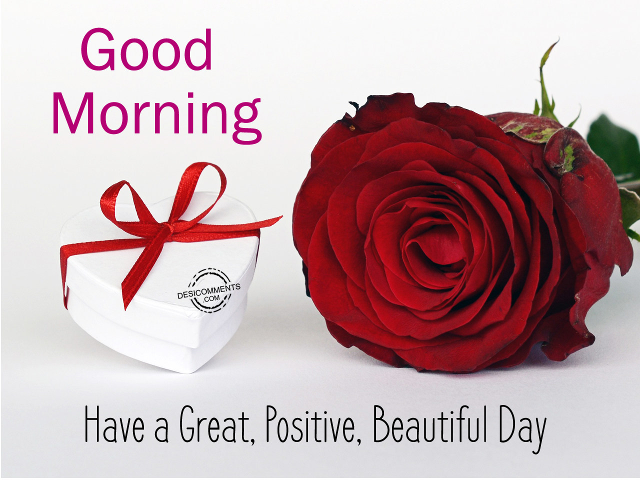 Good Morning Beautiful Have A Good Day : Good morning have a great postive beautiful day