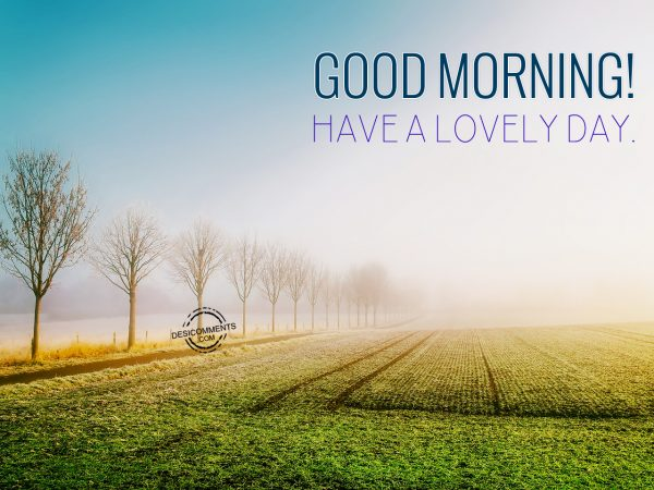 Good Morning - Have A Lovely Day.