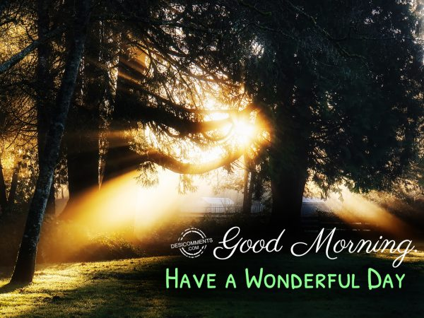 Good Morning- Have A Wonderful Day!