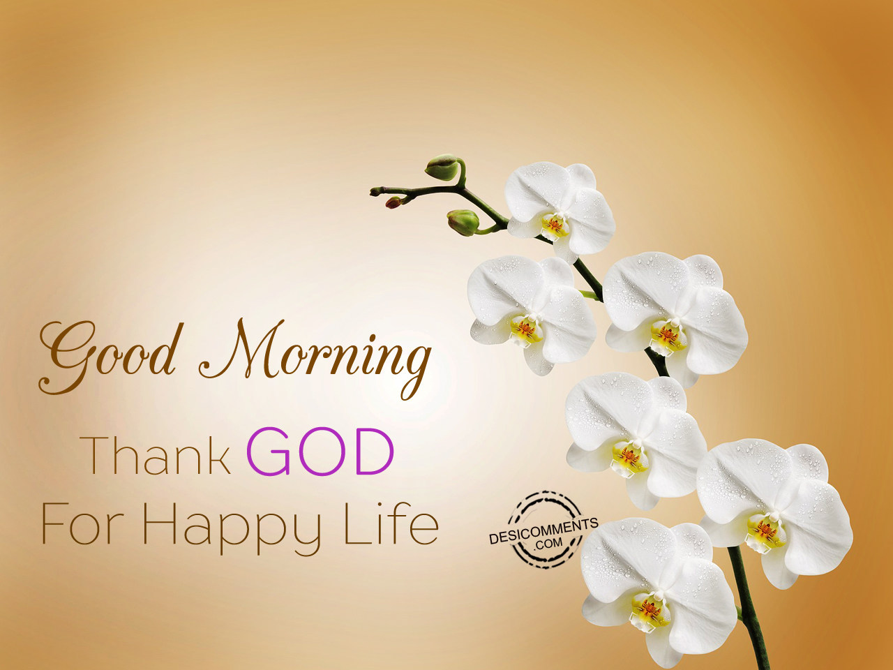 Good Morning Happy Life Quotes: Good Morning Thank God For Happy Life