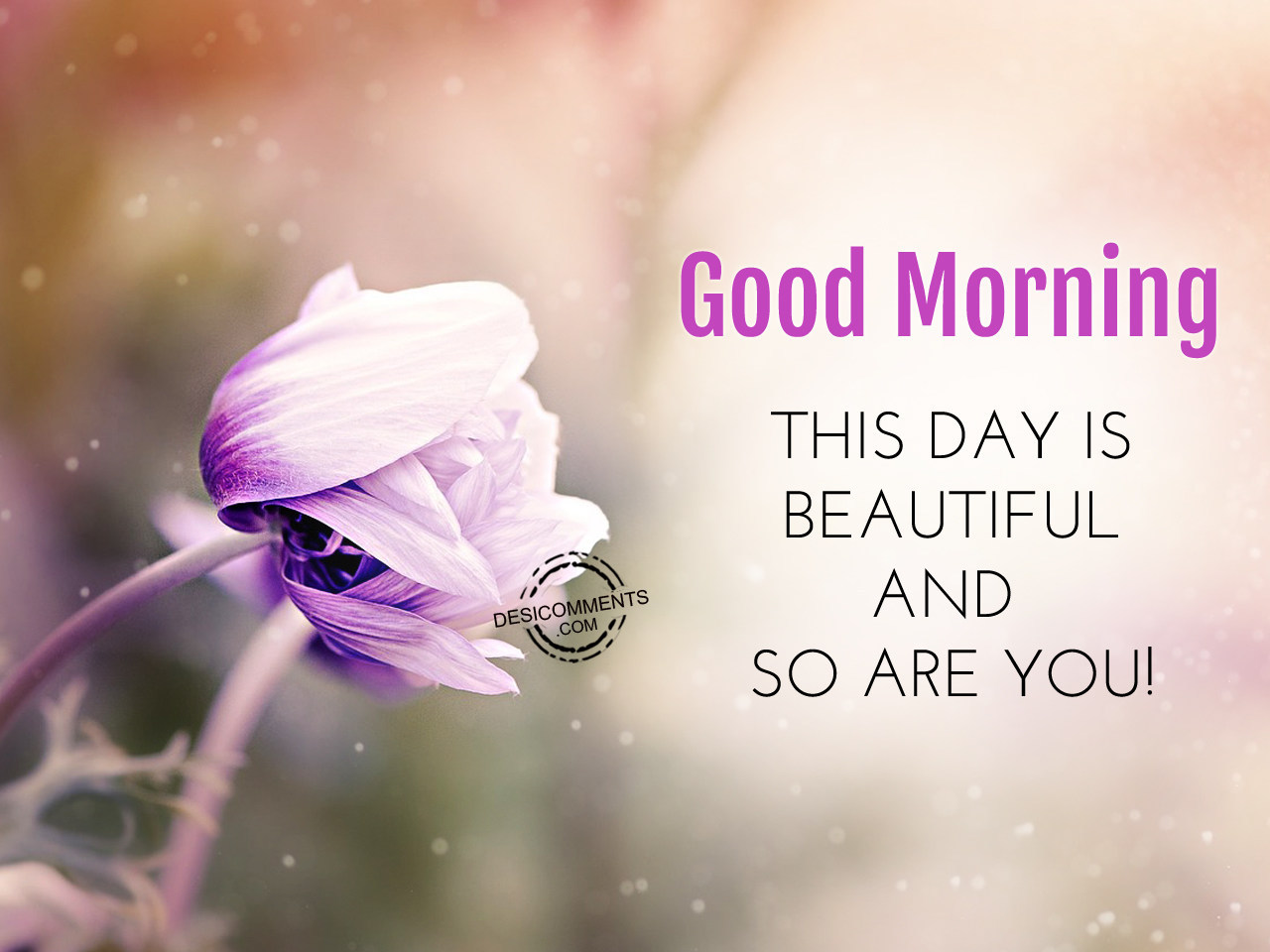 Good morning this day is beautiful and so are you for Good comments on pic