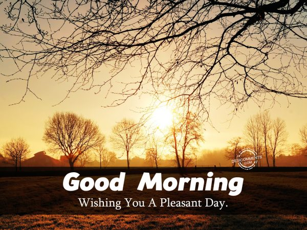 Good Morning Wishing You A Pleasant Day.