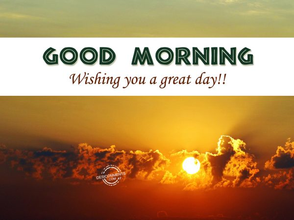 Good Morning Wishing You A great Day...