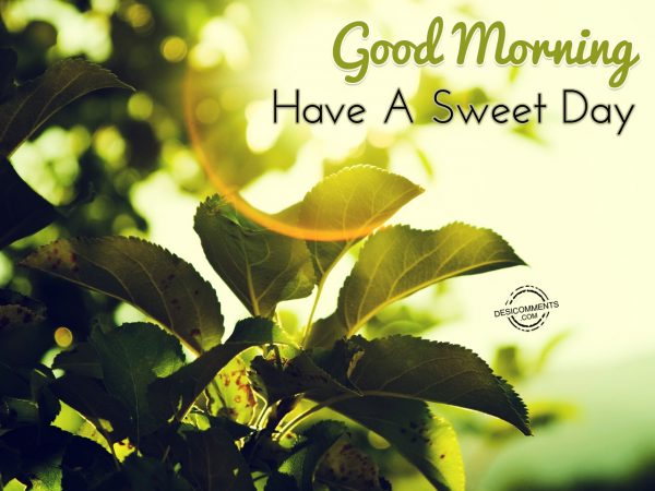 Good Morning... Have A Sweet Day