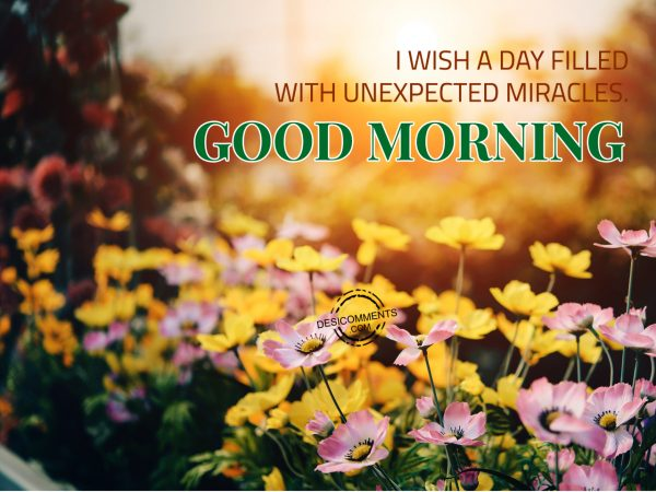 I Wish A Day Filled With Unexpected Miracles.... Good Morning