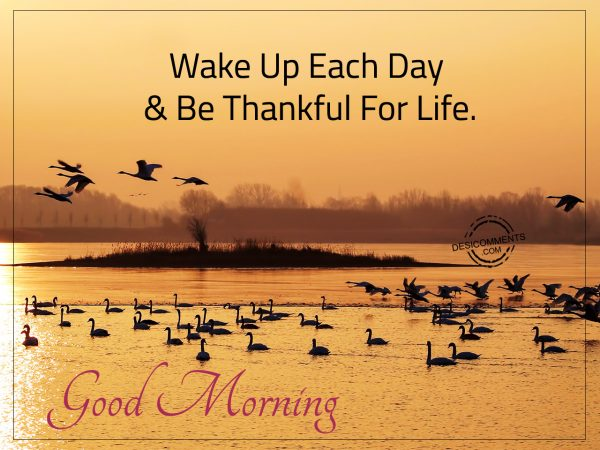 Wake Up Each Day & Be Thankful For Life.