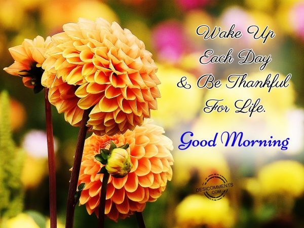 Wake Up Each Day & Be Thankful For Life. Good Morning