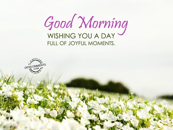 Wishing You A Day Full Of Joyfull Moments