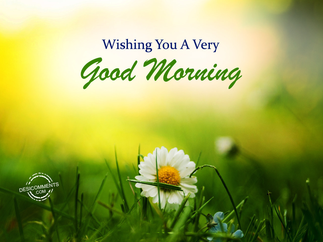 Wishing You A Very Good Morning - DesiComments.com