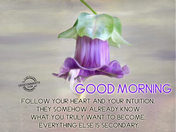 Good Morning Follow Your Heart And Your Intuition