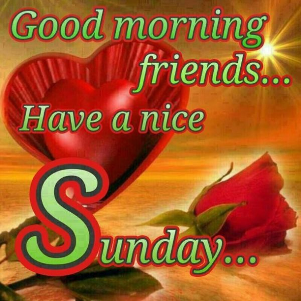 Good Morning Sunday Whatsapp : Sunday pictures images graphics for facebook whatsapp