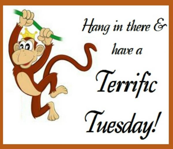 Hang in there And have a terrific tuesday