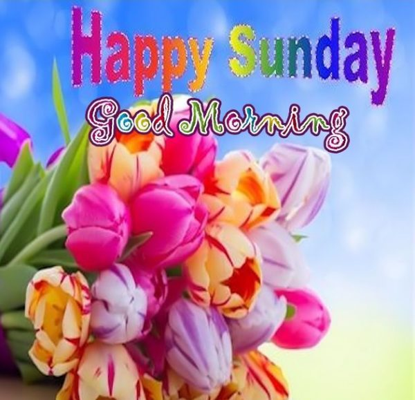 Good Morning Happy Sunday Free Download : Sunday pictures images graphics for facebook whatsapp