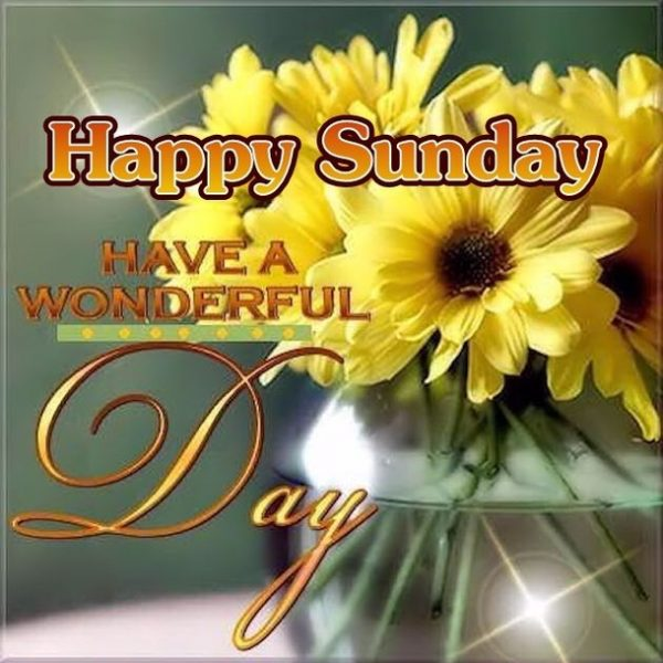 Happy Sunday Have A Wonderful Day