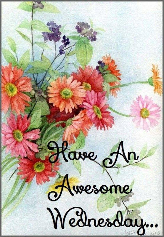 Have A Awesome Wednesday