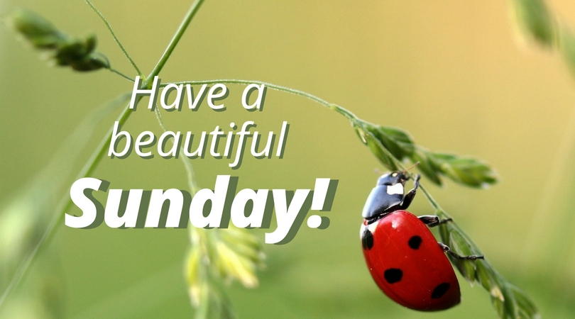 Sunday Pictures, Images, Graphics