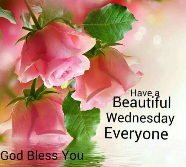 Have A Beautiful Wednesday Everyone