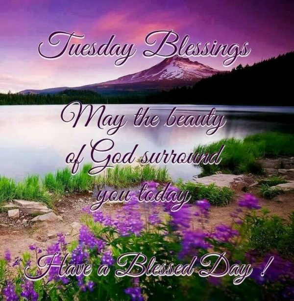 Have A Blessed Day !
