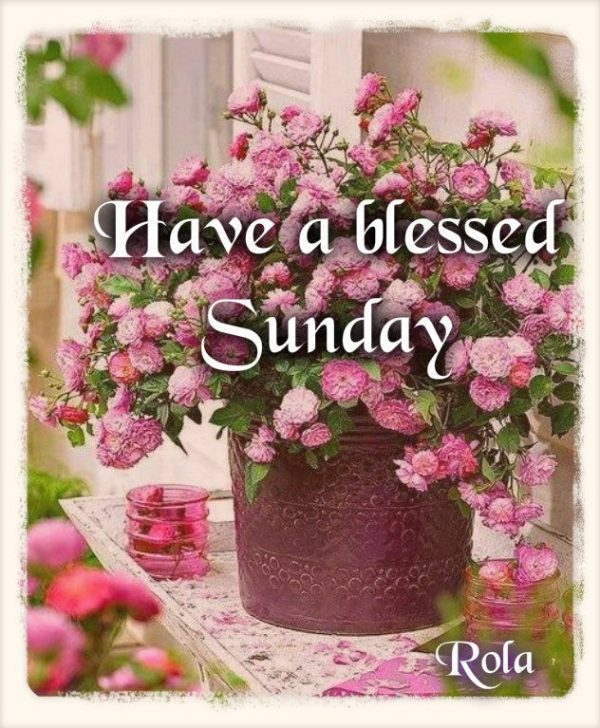 Have A Blessed Sunday !!!