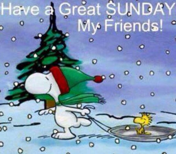 Have A Great Sunday My Friends