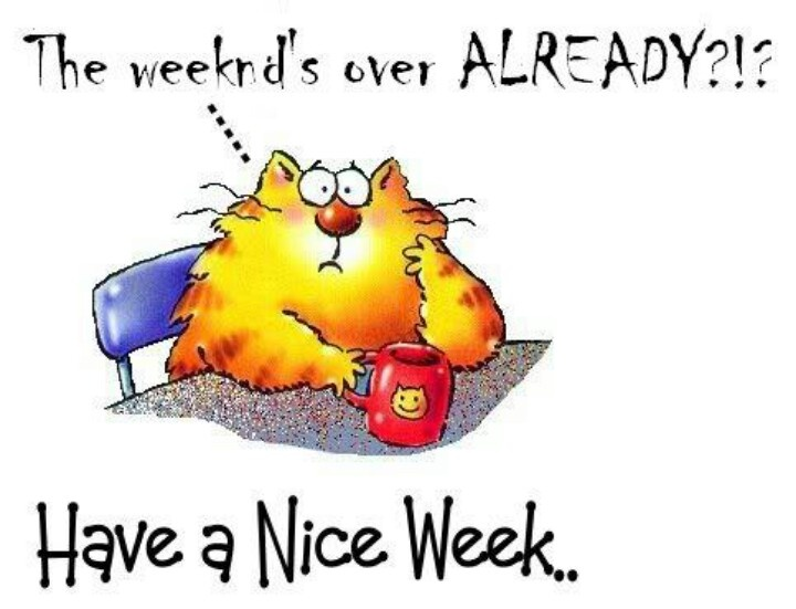 Image result for have a great week '
