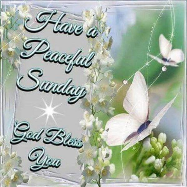 Have A Peaceful Sunday God Bless You