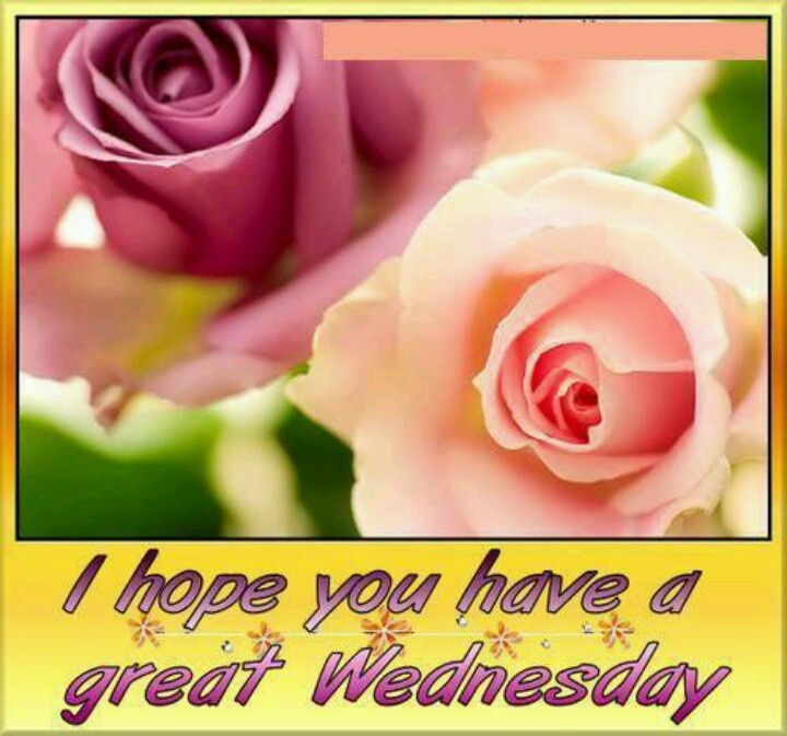 I Hope You Have A Great Wednesday Desicommentscom