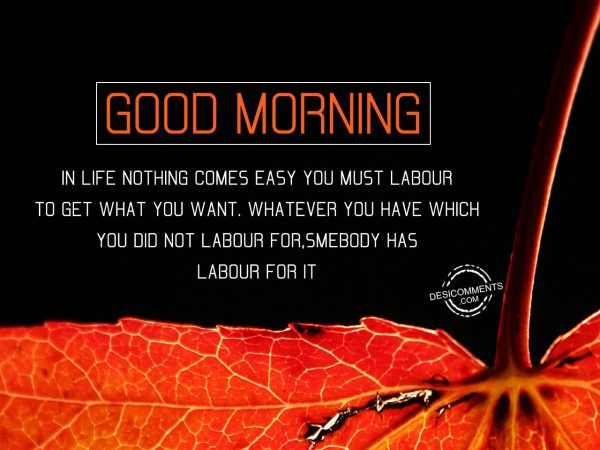 In Life Nothing Comes Easy You Must Labour To Get Want