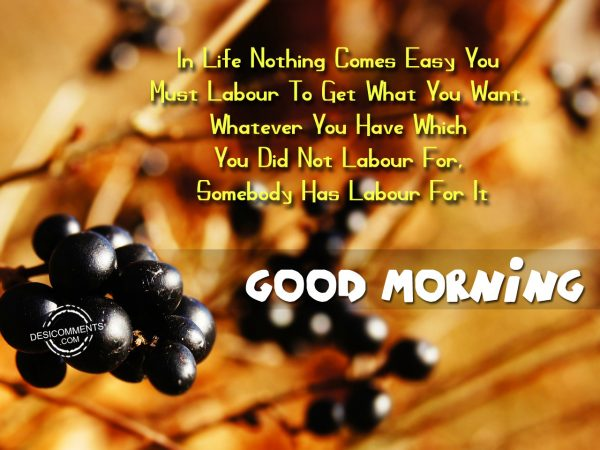In Life Nothing Comes Easy You Must Labour To Get What You Want Good Morning