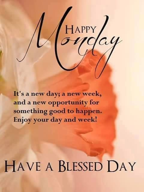 It's a new day a new week