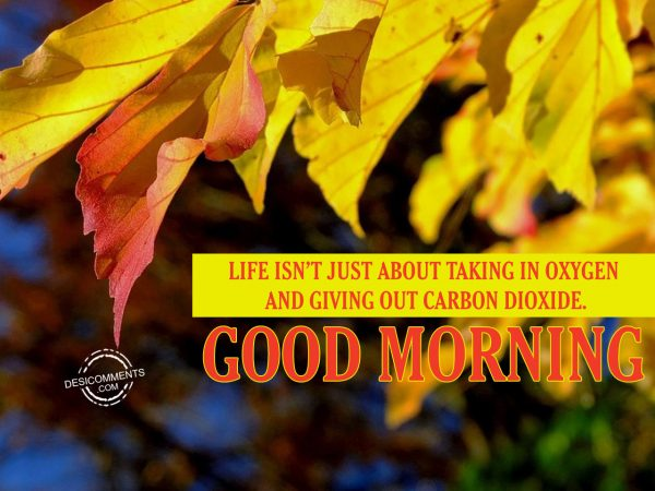 Life Is Not Just About Taking In Oxygen And Giving Out Carbon Dioxide