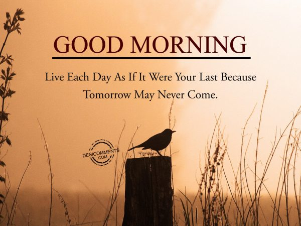 Live Each Day As If It Were Your Last Because Tommorrow May Never Come.