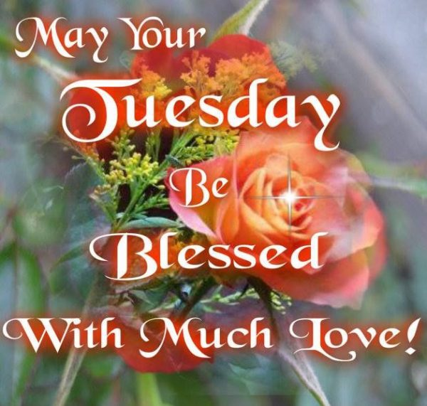 May Your Tuesday Be Blessed With Much Love